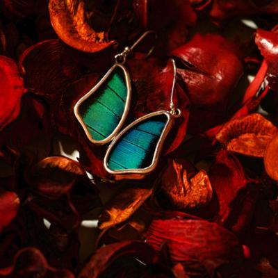 Silver Tree Designs Butterfly Wing Large Wing Earrings - Prepona