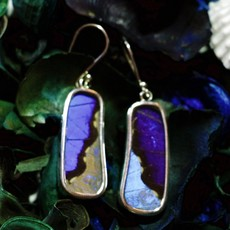 Silver Tree Designs Butterfly Wing Large Rectangle Earrings - Blue Morpho & Morpho Sulkowskyi