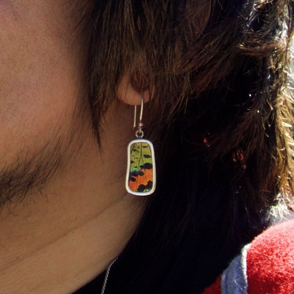 Silver Tree Designs Butterfly Wing Small Rectangle Earrings - Chrysiridia Rhipheus/Sunset Moth