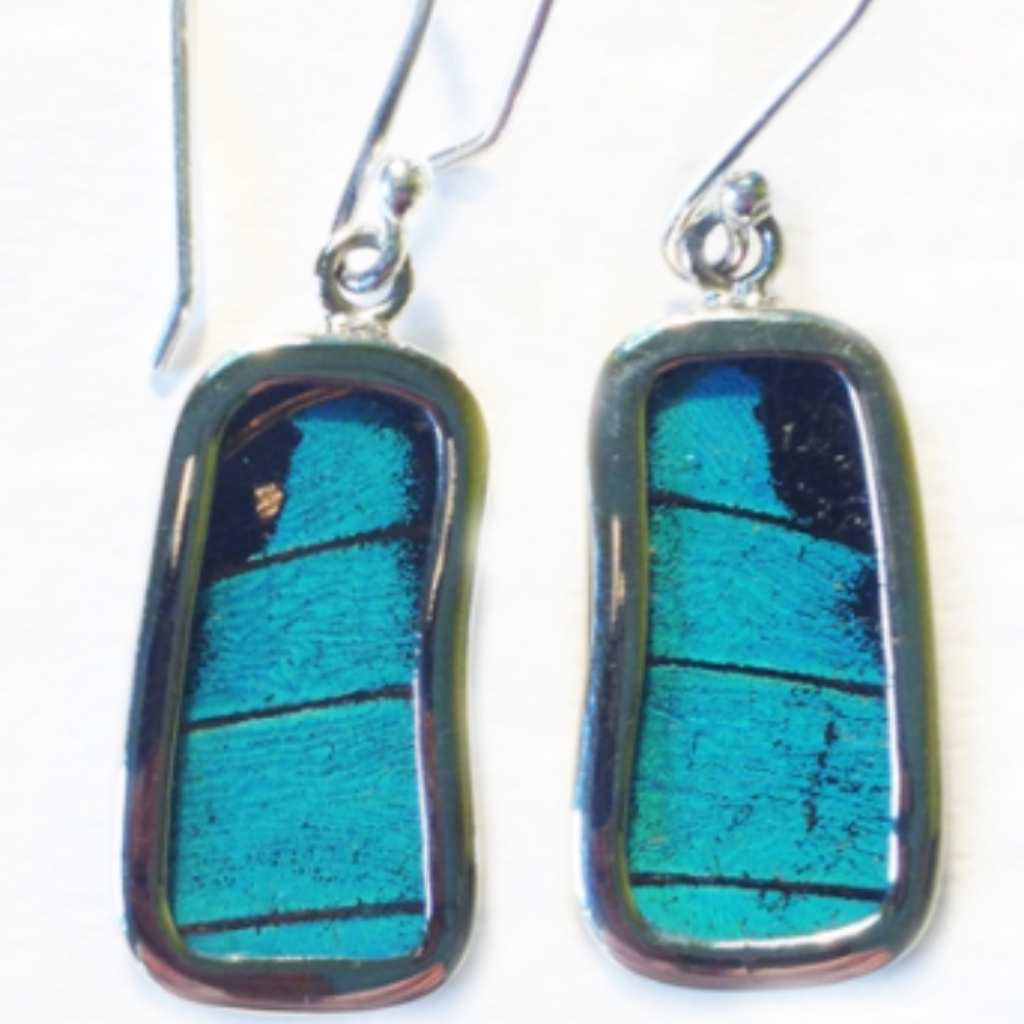 Silver Tree Designs Butterfly Wing Small Rectangle Earrings Blue Green Prepona