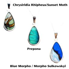 Silver Tree Designs Butterfly Wing Oblong Pendant Blue Morpho / Morpho Sulkowskyi