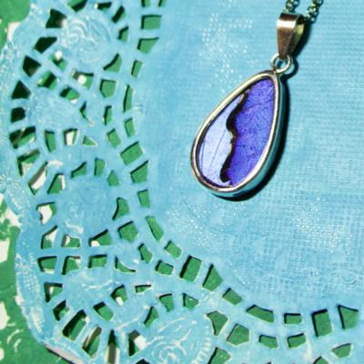 Silver Tree Designs Butterfly Wing Oblong Pendant - Blue Morpho / Morpho Sulkowskyi