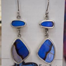 Silver Tree Designs Butterfly Wing Large  Wing Earrings Blue Morpho/Morpho Sulkowskyi