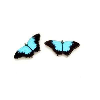 Dunitz & Co Papilio Butterfly Stud Earrings