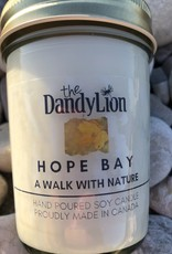 serendipity Hope Bay 8 oz soy candle