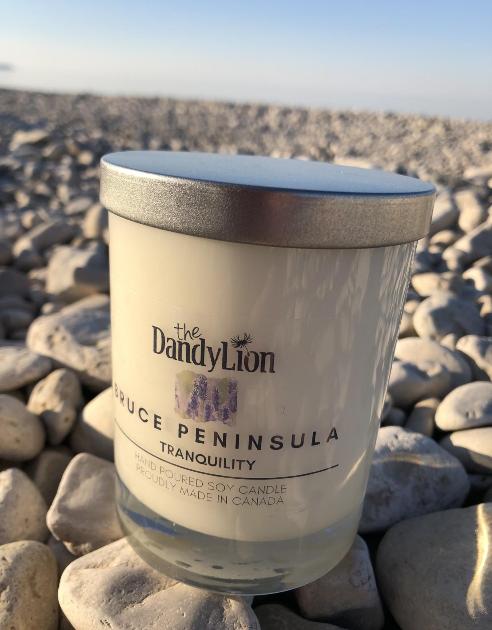 serendipity Bruce Peninsula 12 oz candle Tranquility