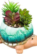 Turtle Planter with Succulents