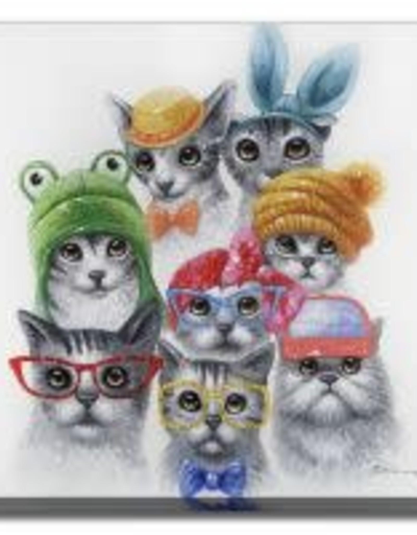 Feline Friends
