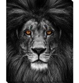Streamline Art Lion Canvas Print