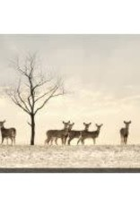 Streamline Art Doe a Deer