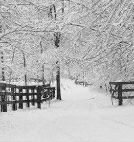 Winter Tracks Christmas Cards 20 pkg
