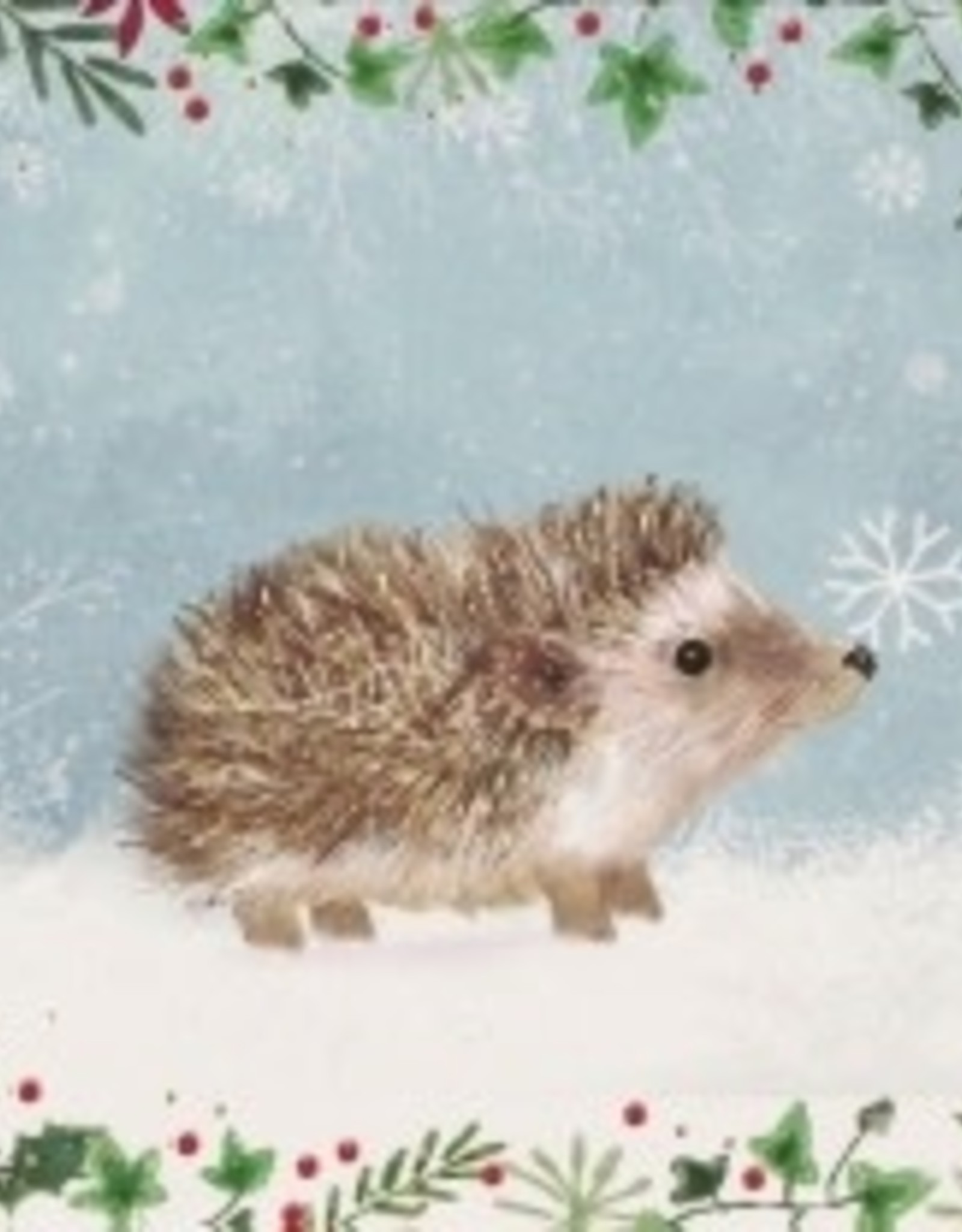 Happy Hedgehog Small Christmas Cards 20