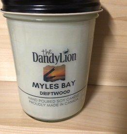 serendipity Myles Bay Driftwood