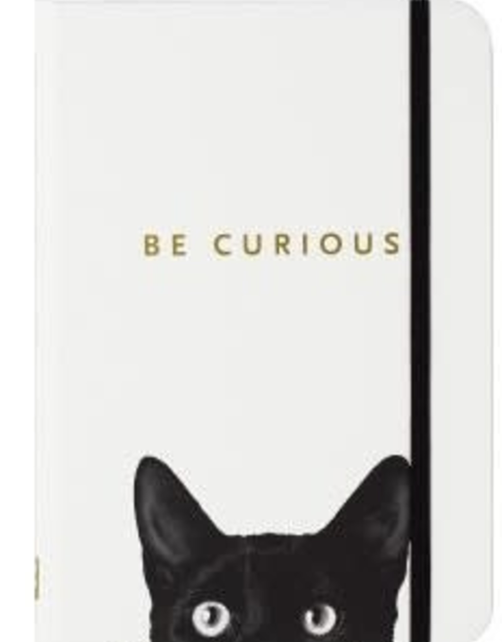 Curious Cat Journal