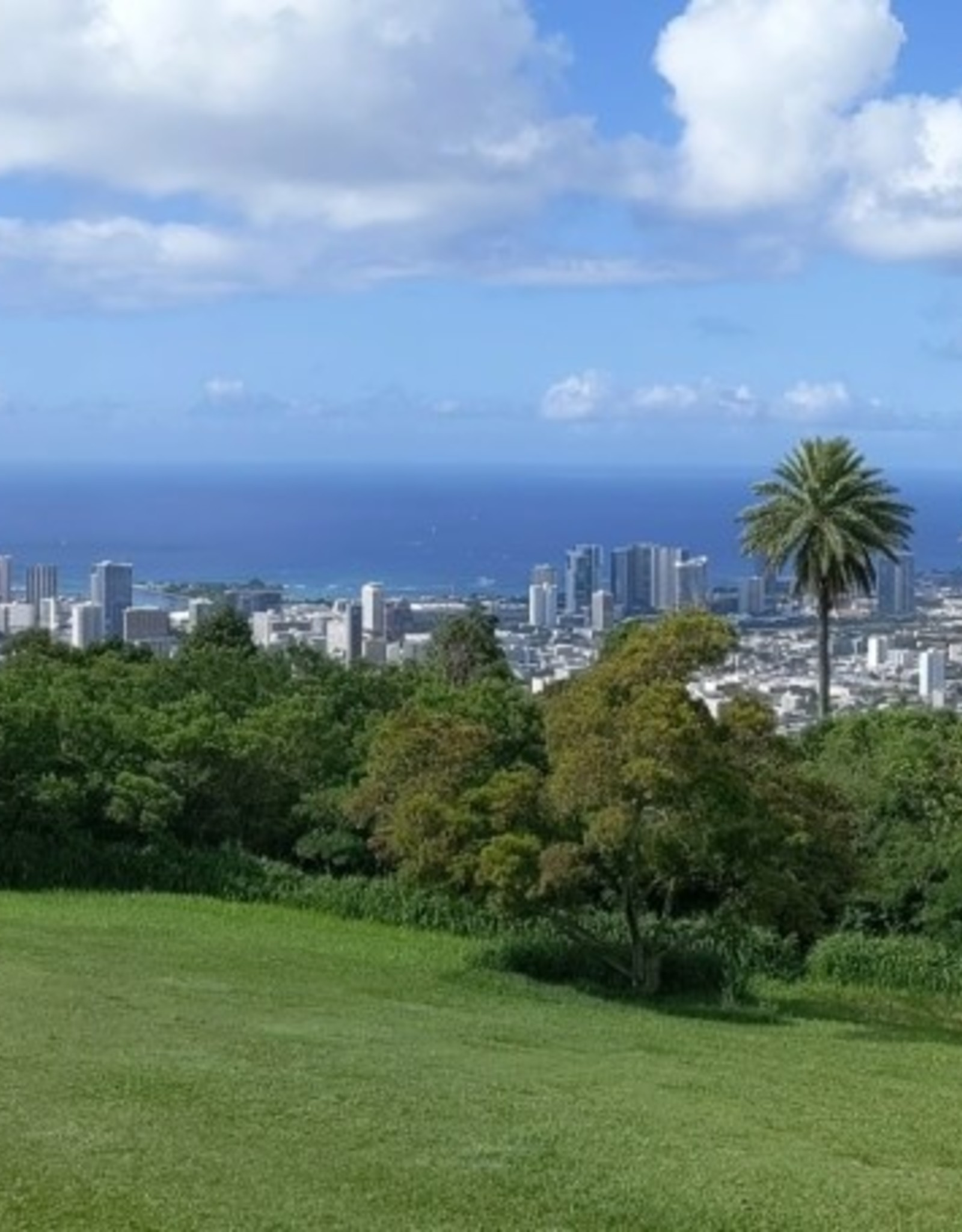 Southshore Vista from Tantalus Tour