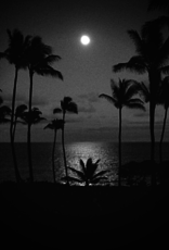 Veloguide Global Cycling Tours Full Moon Over the Pacific Tour