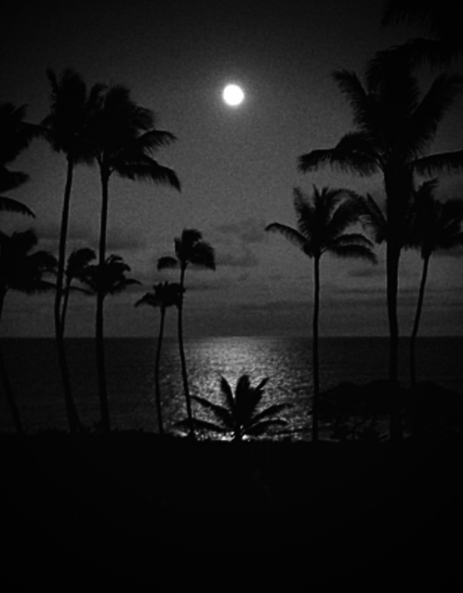 Velohana Full Moon Over the Pacific Tour