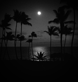 Full Moon Over the Pacific Tour