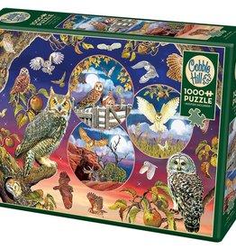 Cobble Hill Owl Magic