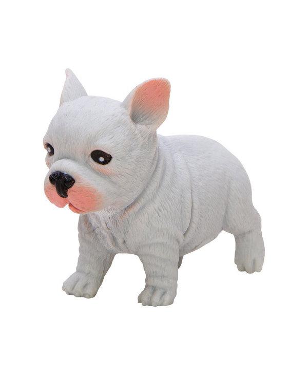 Bulldog pocket Pup