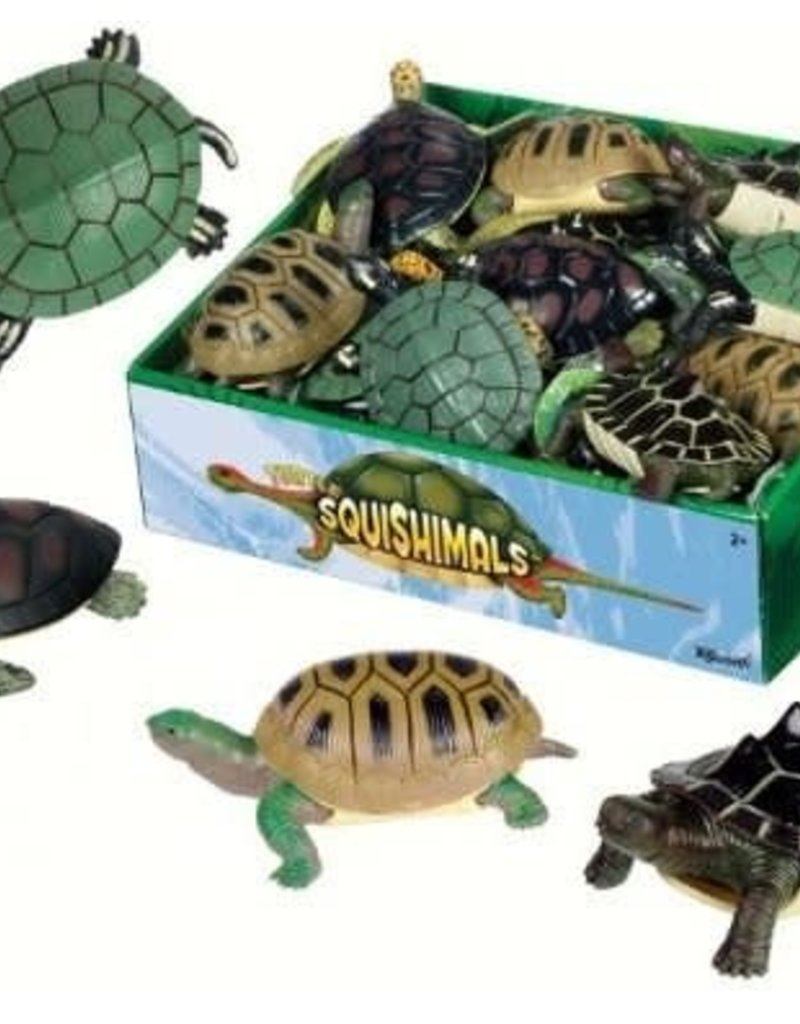 Turtle Squishimal
