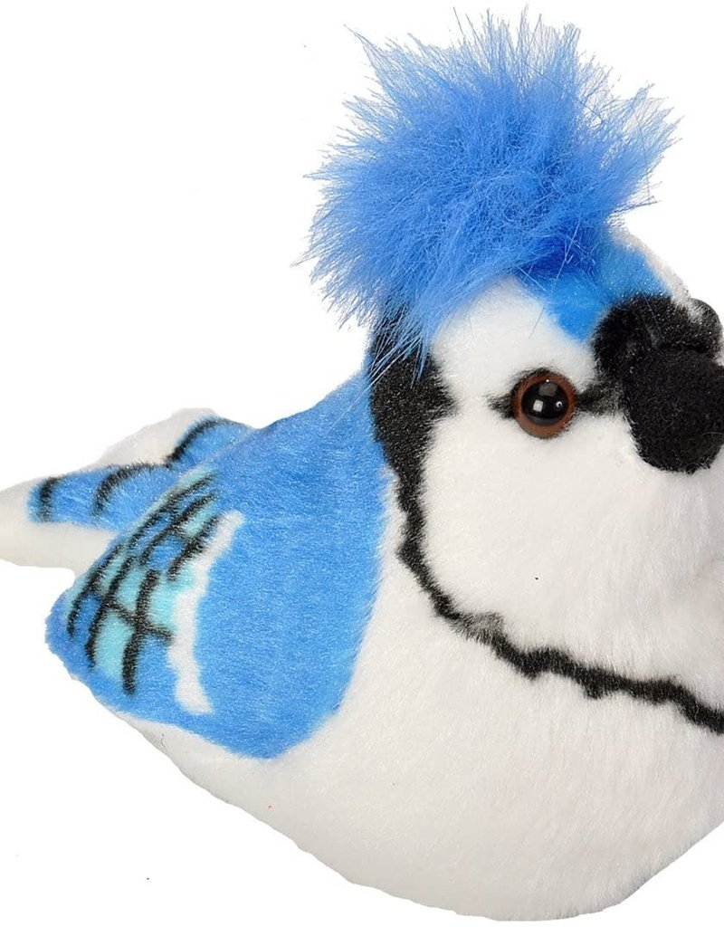 Wild Republic Blue Jay