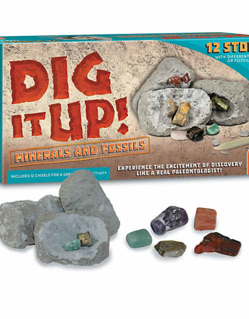 Dig it Up Minerals and Fossils
