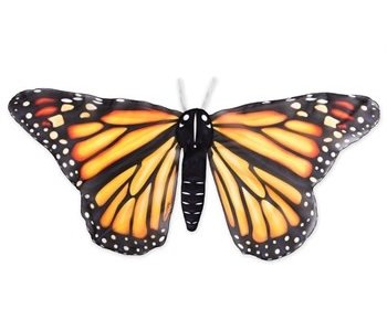 Realistic Butterfly Wings Wrap