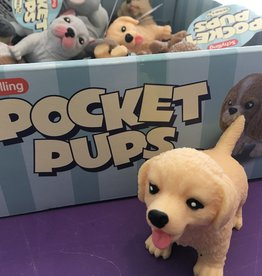 Pocket Pup Labrador