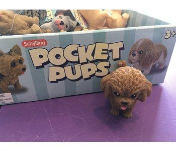 Pocket Pup Poodle