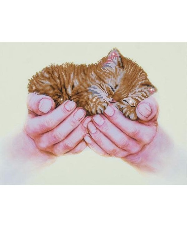 Precious Kitten - Diamond Dotz
