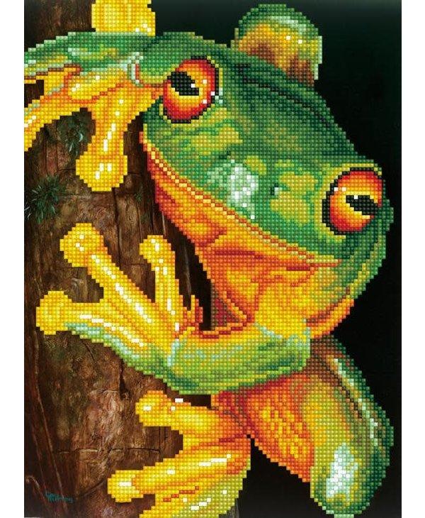 Green Tree Frog - Diamond Dotz