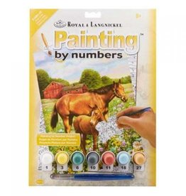Horse In Field Paint By Number