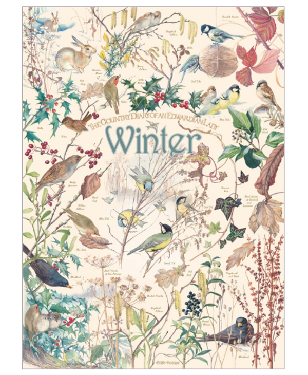 Country Diary Winter 1000 piece