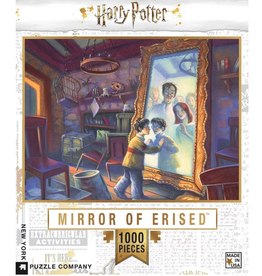 New York Puzzle Company , Harry Potter 1000 piece puzzle