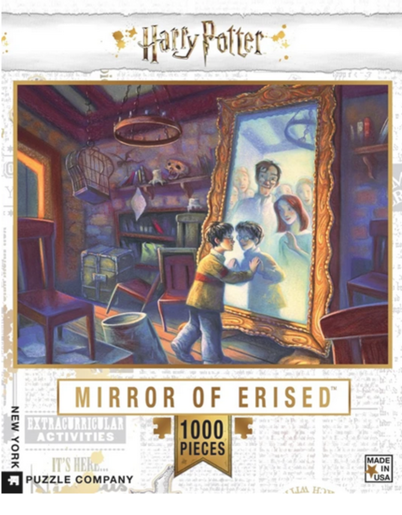 New York Puzzle Company Mirror of Erised Harry Potter 1000 piece puzzle