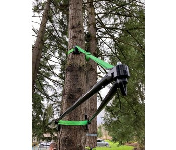 Slackers Build A Branch