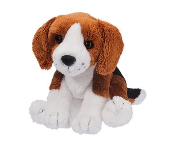 Sniff Beagle