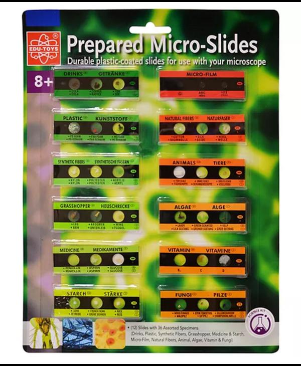 Prepared 12 Micro Slides with 36 Specimens