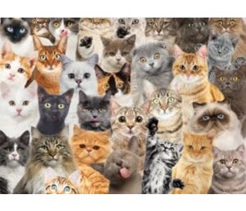 ALL THE CATS 500 pc