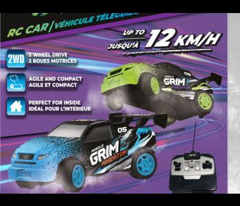 RC Mini Mad Beast Car