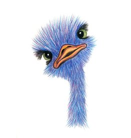 Diane W Youth Pencil Crayon Class - Baby Ostrich Wed Feb 5