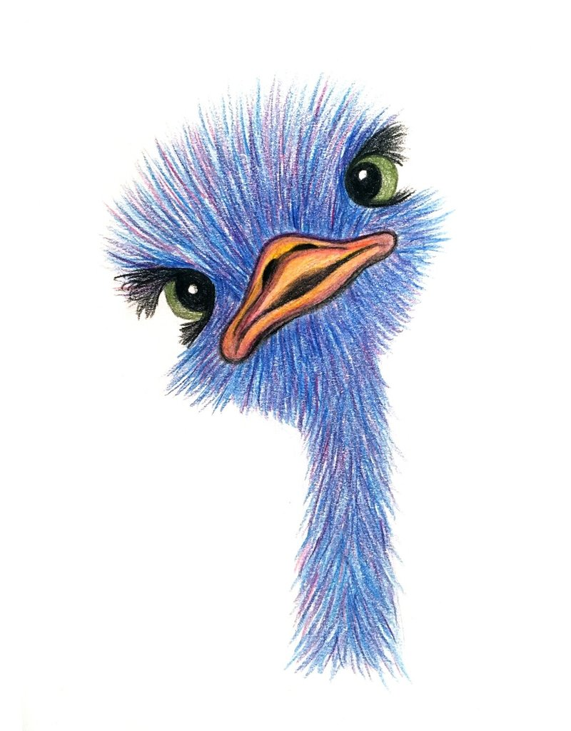 Diane W Pencil Crayon - Baby Ostrich Wed Feb 5 @ 6-7 pm (Please register 3 days prior to class)