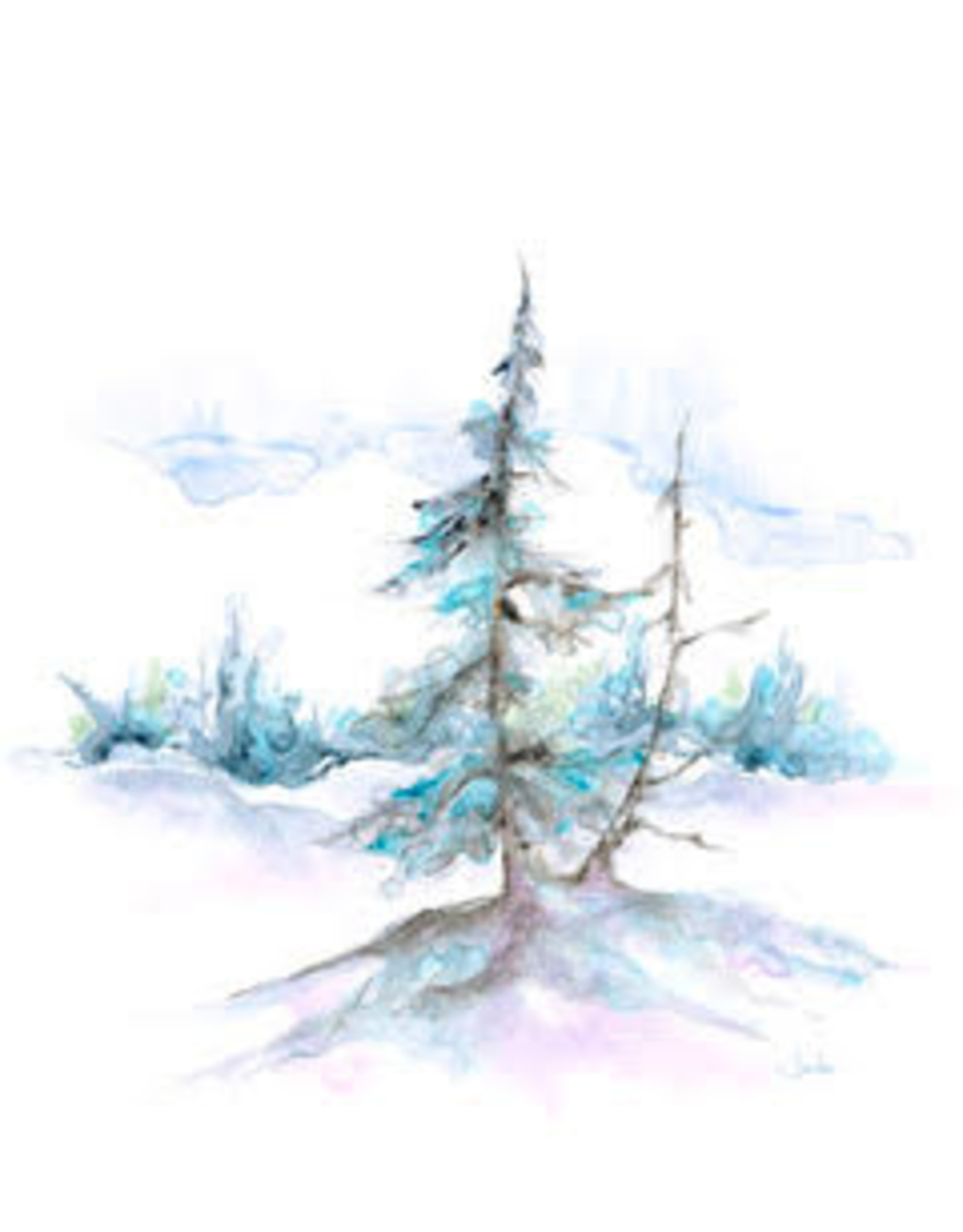 Wilderness (10062a)