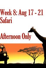 Art Camp Art Camp: Week Eight August 17 - Aug 21 PM