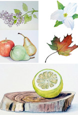 Tamara S Art Class: Watercolour Beginner Level 1 Tues Aug 4