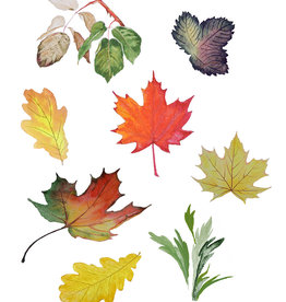 Tamara S Watercolour How to paint leaves Tues Oct 20