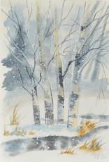 Tamara S W/C  In the Birch Grove Tues Dec 15 11:00 am to 12:30 pm