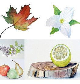 Tamara S Watercolour Art Class Beginners Level One Tues Feb 2- 23 2- 4 pm