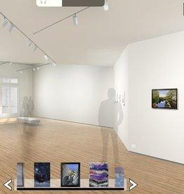 Artist in Resident Virtual Gallery Fee